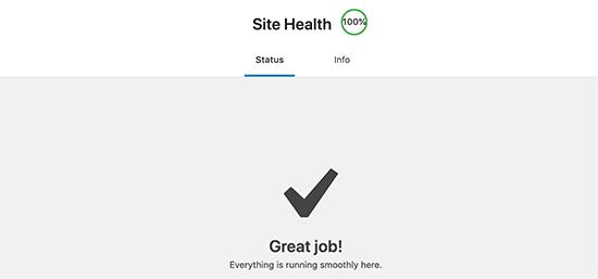 Getting a perfect score in WordPress site health