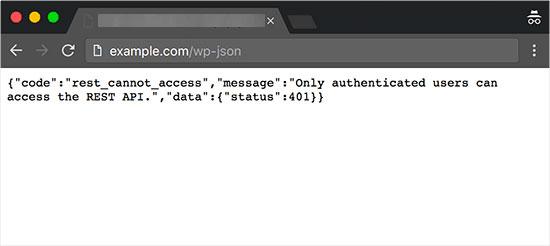 JSON REST API