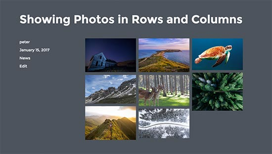 Photos in rows and columns