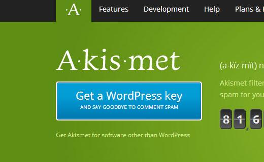 Get an Akismet Key for your WordPress website