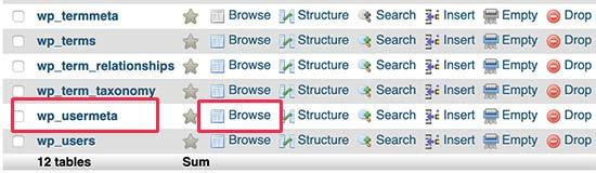 Insert new row to usermeta table