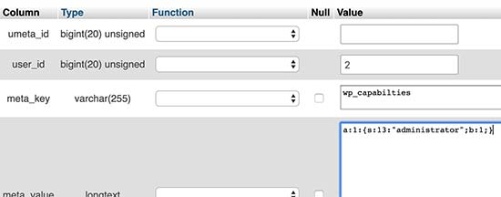Adding the user level meta field