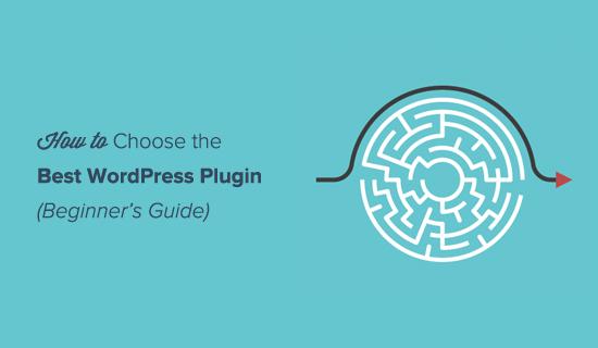 Choose the Best WordPress Plugin