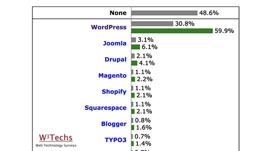 WordPress usage