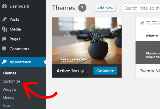 How to access WordPress Customizer