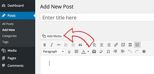 Adding an audio file in WordPress post using media uploader