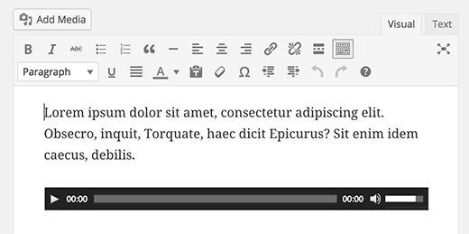 Single audio file embedded into WordPress visual editor