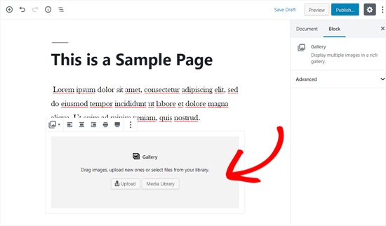 Gallery Block Added to a WordPress Page