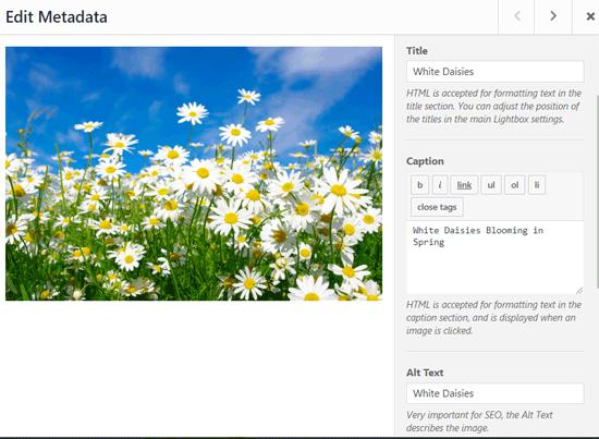 Edit Gallery Image Metadata