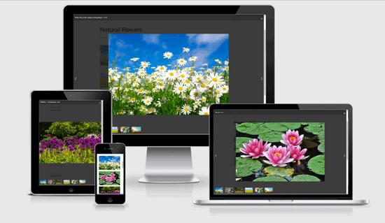Responsive WordPress Photo Gallery
