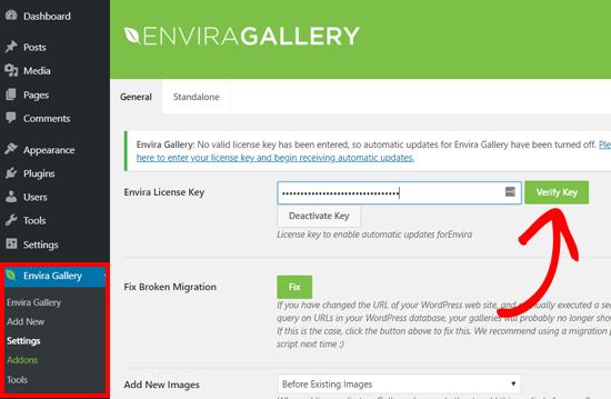 Enter Envira Gallery License Key