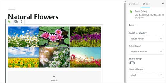 Envira Gallery Added to WordPress Post Editor