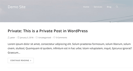 Private post preview in WordPress