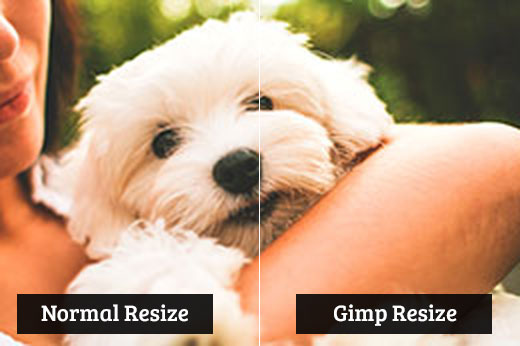 Comparing Gimp resize vs normal resize