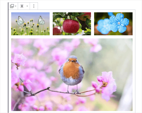 Four images in the gallery (butterflies, apple, blue flowers, and robin)