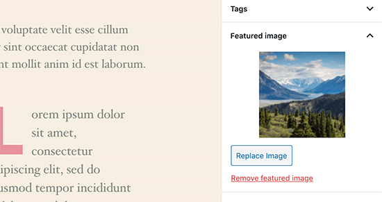 Featured image preview in post editor