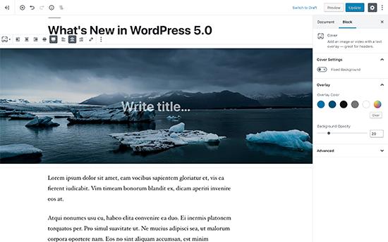 New WordPress editor called Gutenberg