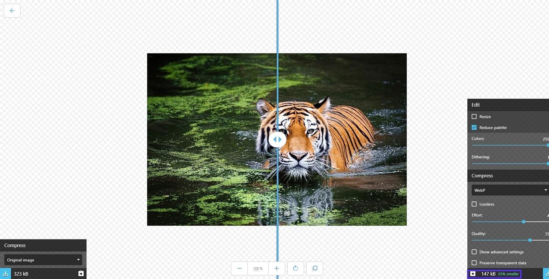 Image file types: webp image compression