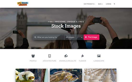 My Stock Images