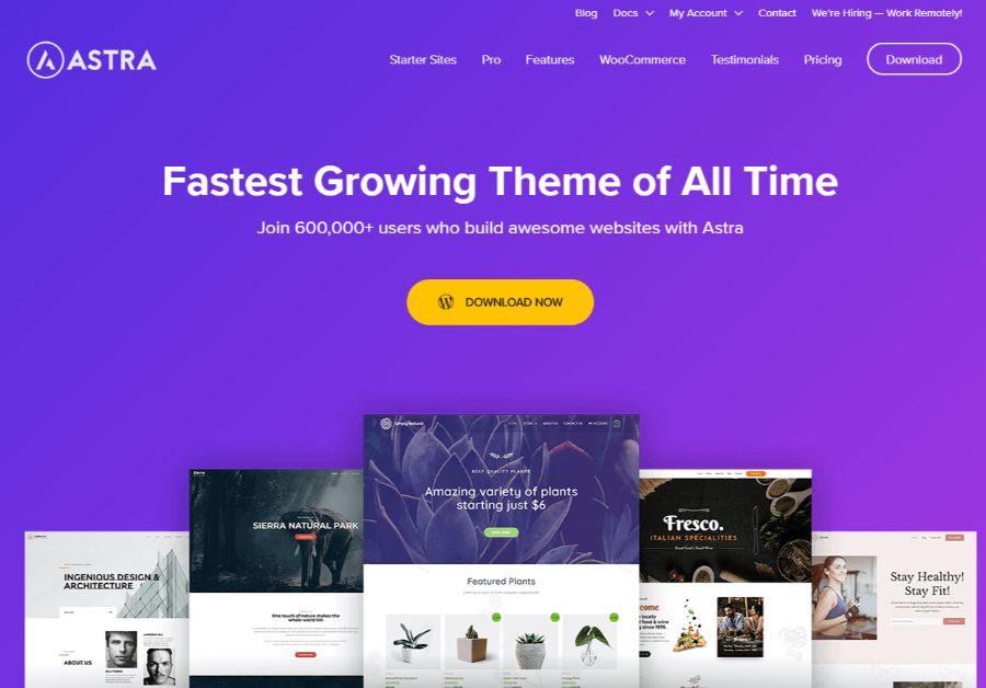 astra - WordPress membership theme