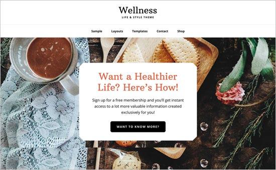 Wellness Pro