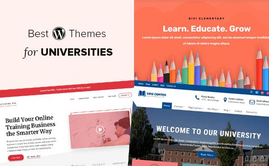 Best WordPress Themes for Universities