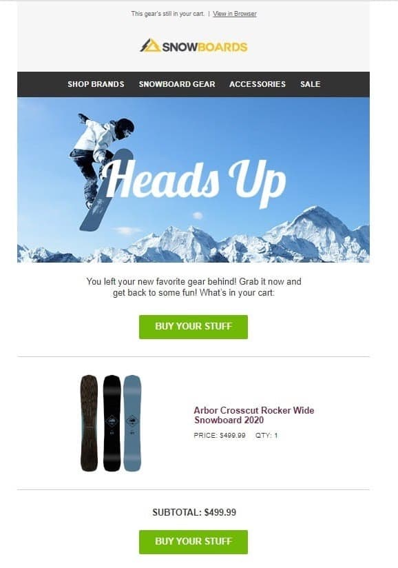 Snowboards.com - abandoned cart email