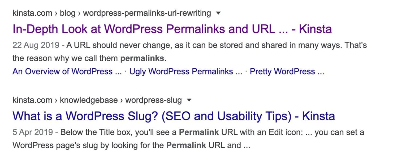 Google result - WordPress permalinks