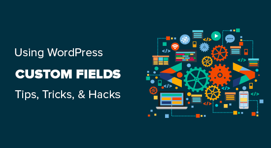 Using custom fields in WordPress with practical examples