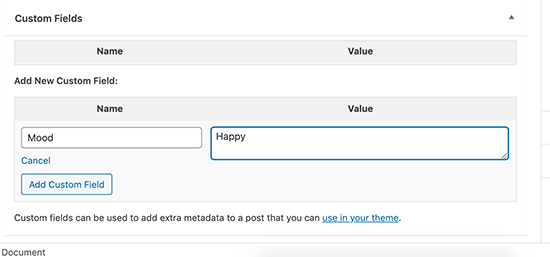 Adding custom field name and value