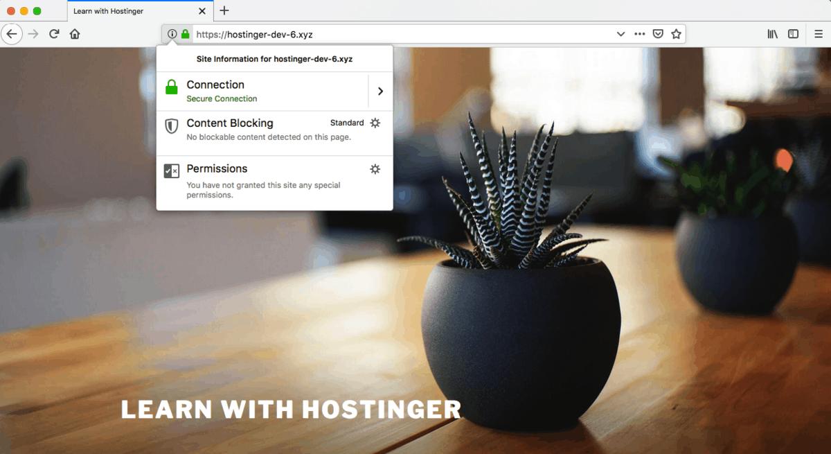 Зеленый Замок в адресной Строке при HTTPS-соединении