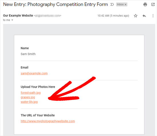 The email you receive with the form entry details, including file download links