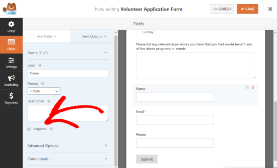 Making a field on your form mandatory (shows the Required checkbox, checked)