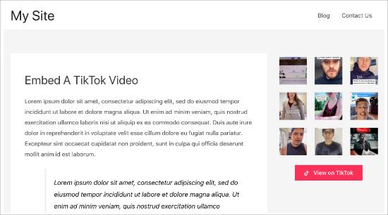 Sidebar TikTok siteview