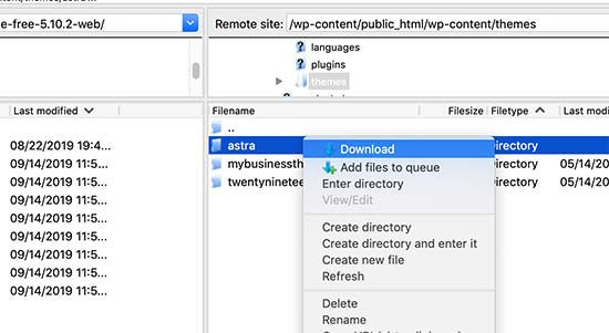 Download your WordPress theme