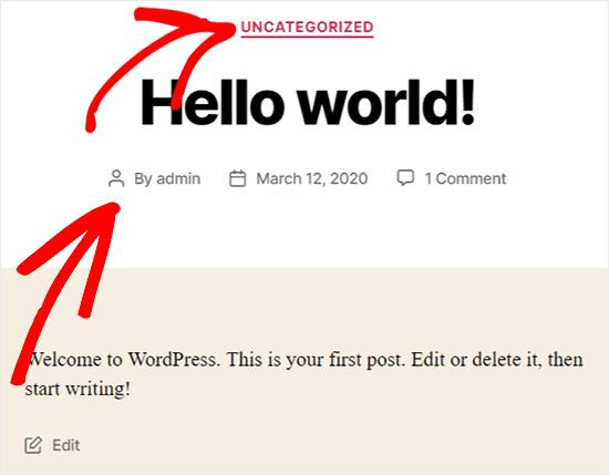 view wordpress metadata on front end