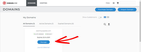 DNS and NAMESERVERS on Domain