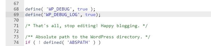 Активация WP_DEBUG_LOG - Скриншот Строк Кода